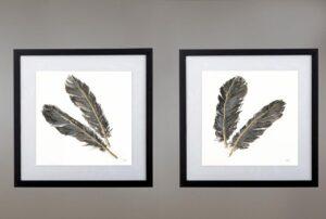 Cuadros plumas