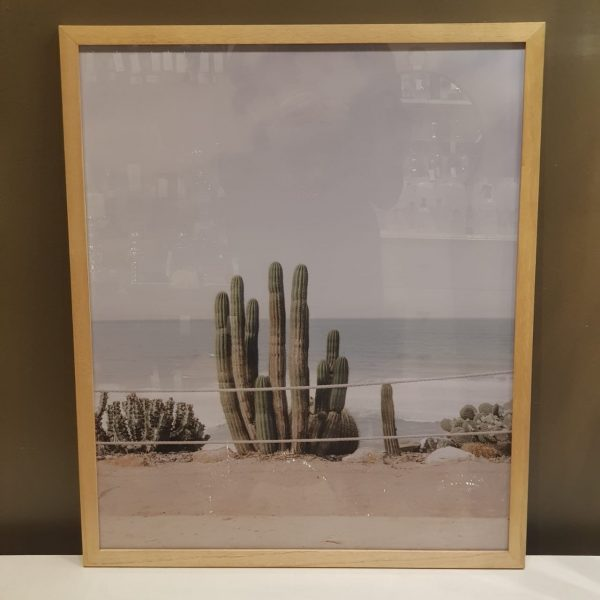 Cuadro Cactus A