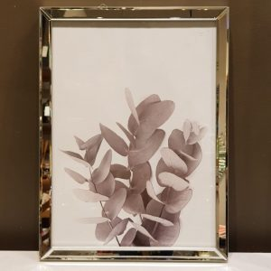 Cuadro eucaliptus