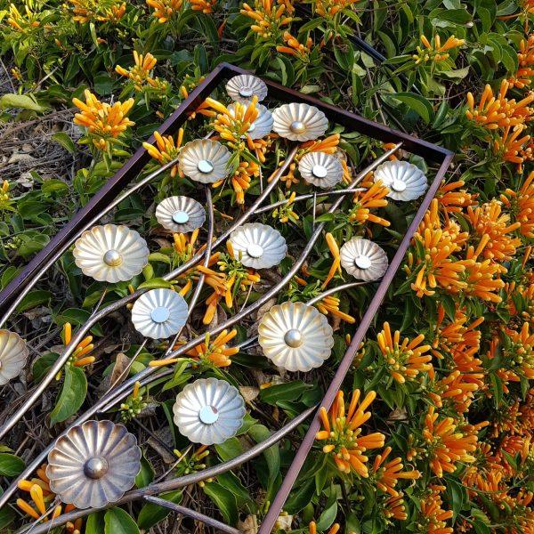 Friso Flowers