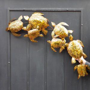 Friso Tortuga